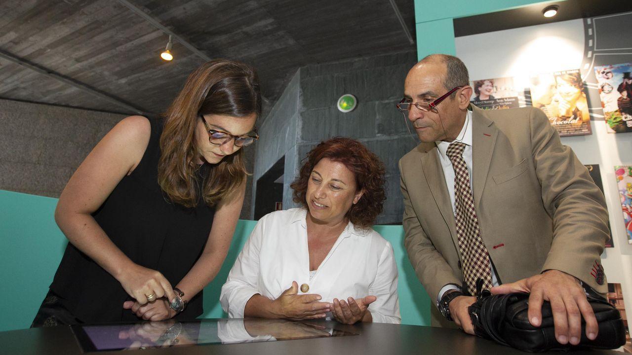 Gran batalla en Galaicoi.La investigadora Ángela Nieto trabaja en el Instituto de Neurociencias (CSIC-UMH) de Alicante. Aquí dirige un grupo especializado en la plasticidad y los movimientos celulares durante el desarrollo embrionario y el cáncer