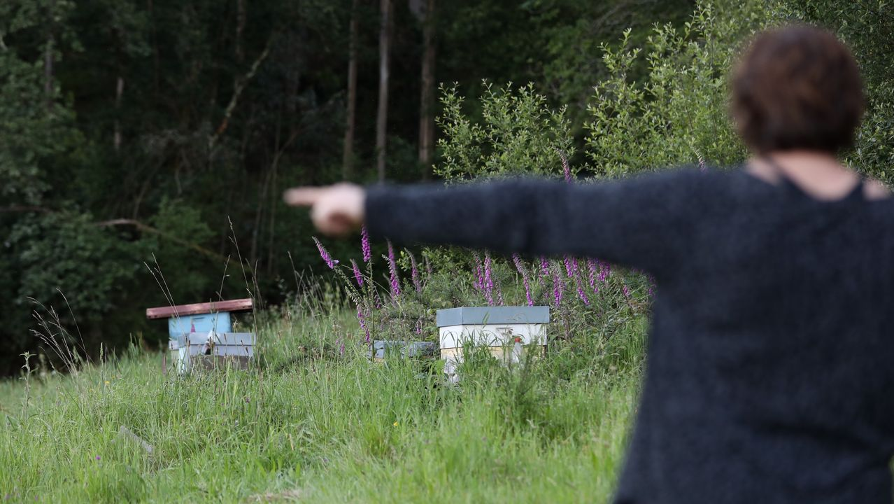 Amable Perez Diz apicultor ecológico en el Muíños parque del Xurés