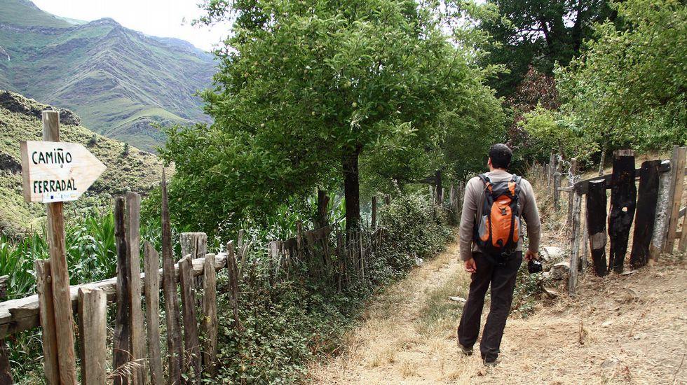 Un tramo del Camiño Ferradal, en Quiroga