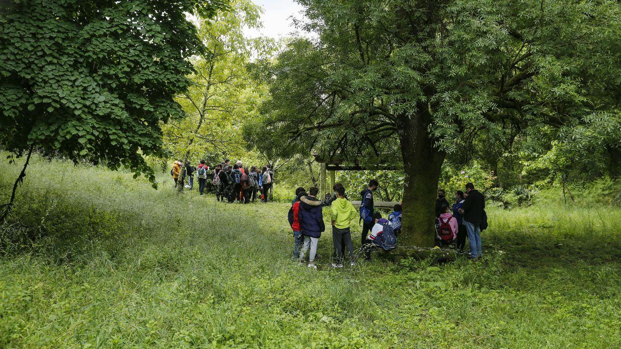 Así fue la ruta ecológica de los alumnos de Maristas.VOZ NATURA