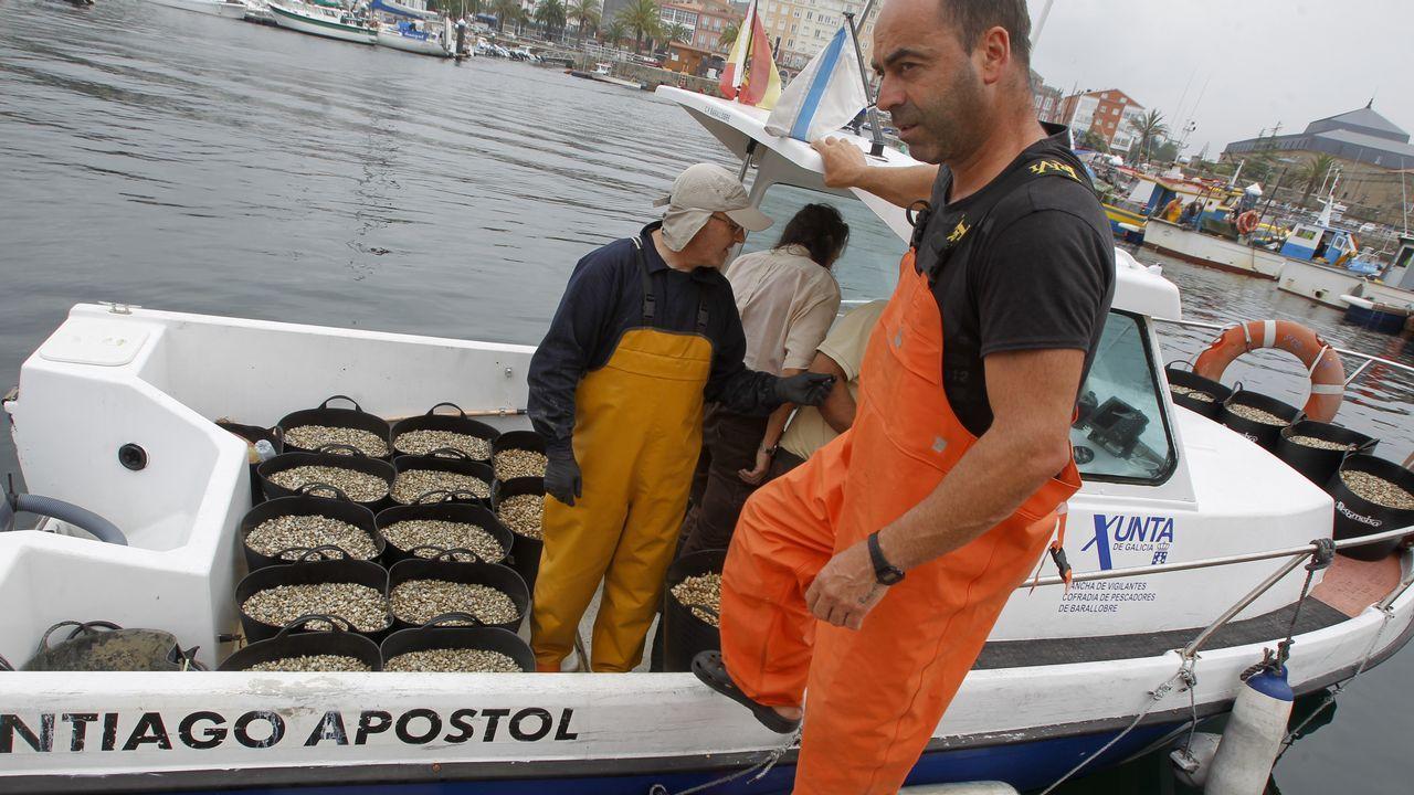La ruta por los castillos gallegos.Mariscadoras recogiendo ostra japonesa en la ría de O Barqueiro