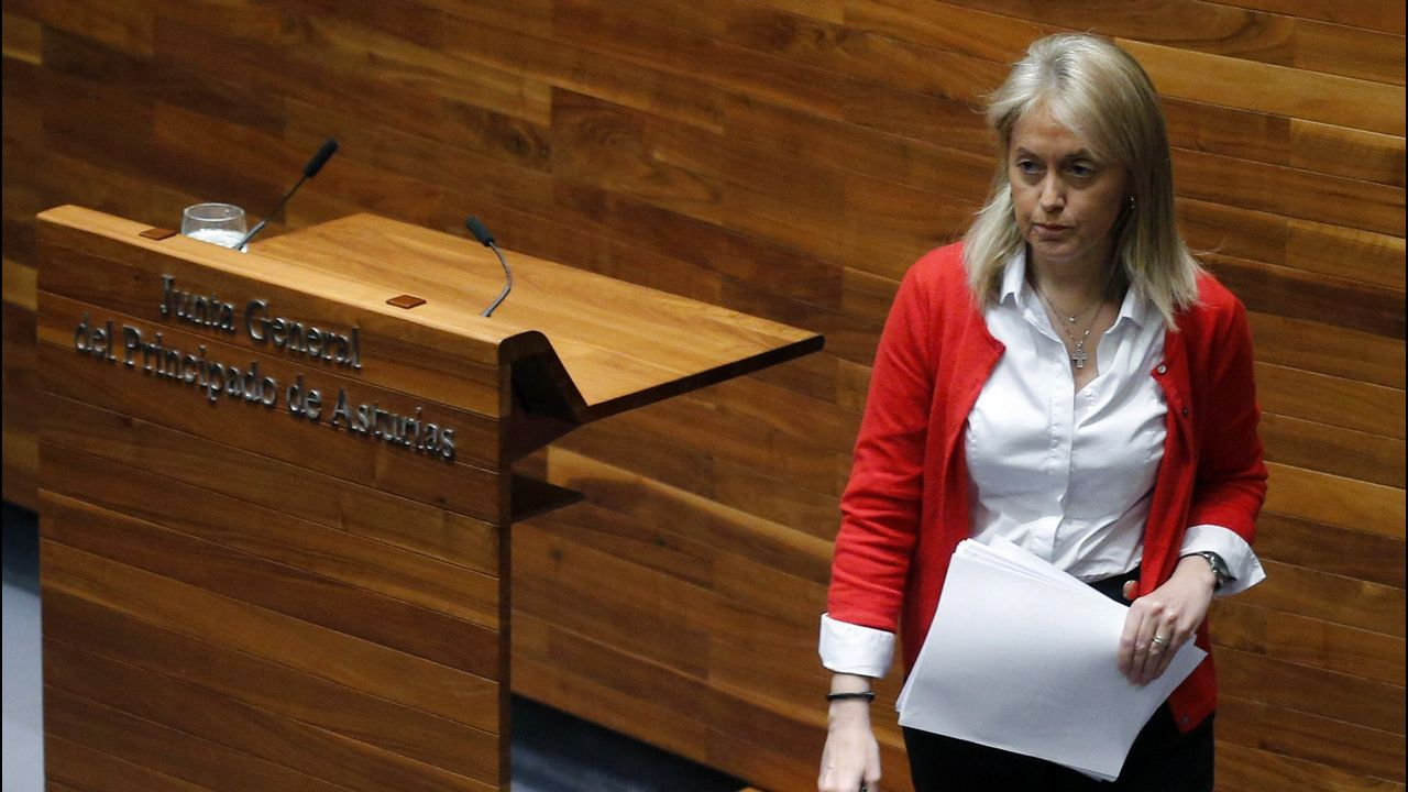 La expresidenta de Foro, Cristina Coto, anunció su dimisión en junio tras ser desautorizada por la Comisión Directiva del partido en relación a su decisión de cambiar la situación laboral de una de las asesoras del grupo parlamentario.