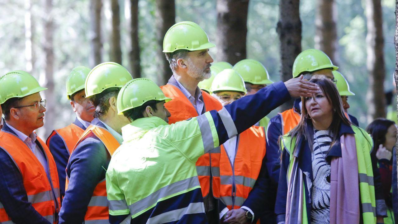 Visita a Sergude, Boqueixón, con motivo del Día Internacional de los Bosques