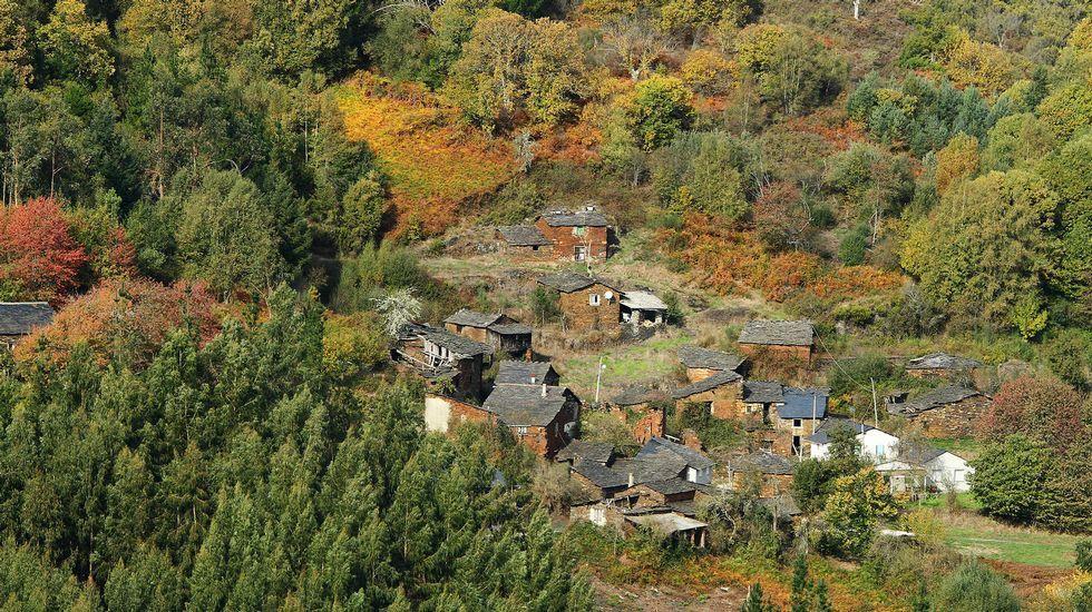 La aldea está rodeada de soutos que producían grandes cantidades de castaña