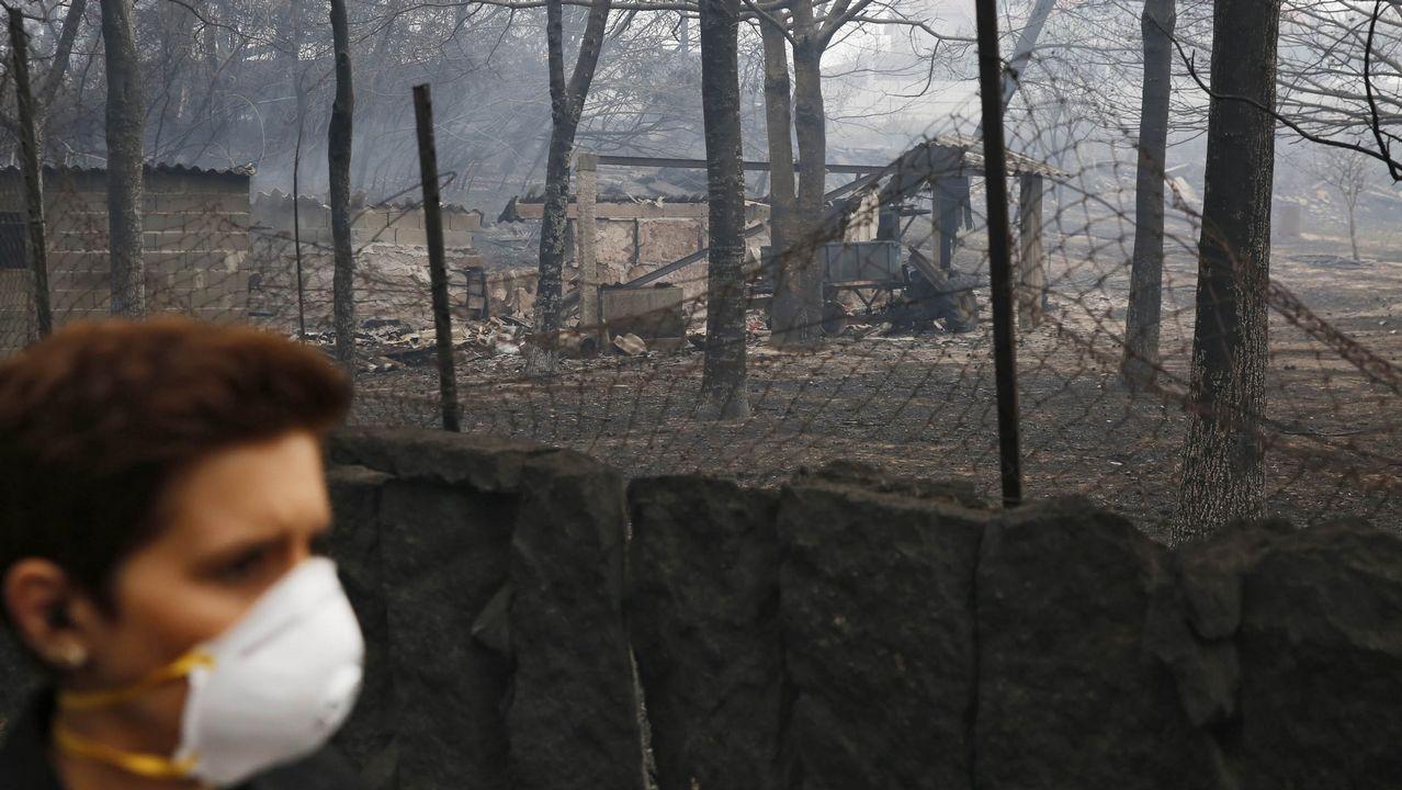 Incendio forestal en Abelenda das Penas, en Carballeda de Avia