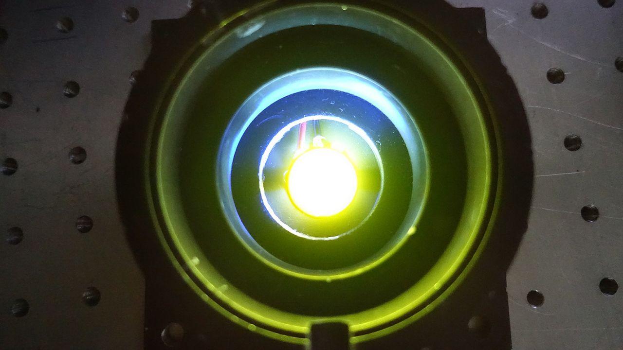 alumnos, estudiantes, universitarios.LED con el material que contiene las proteínas fluorescentes.
