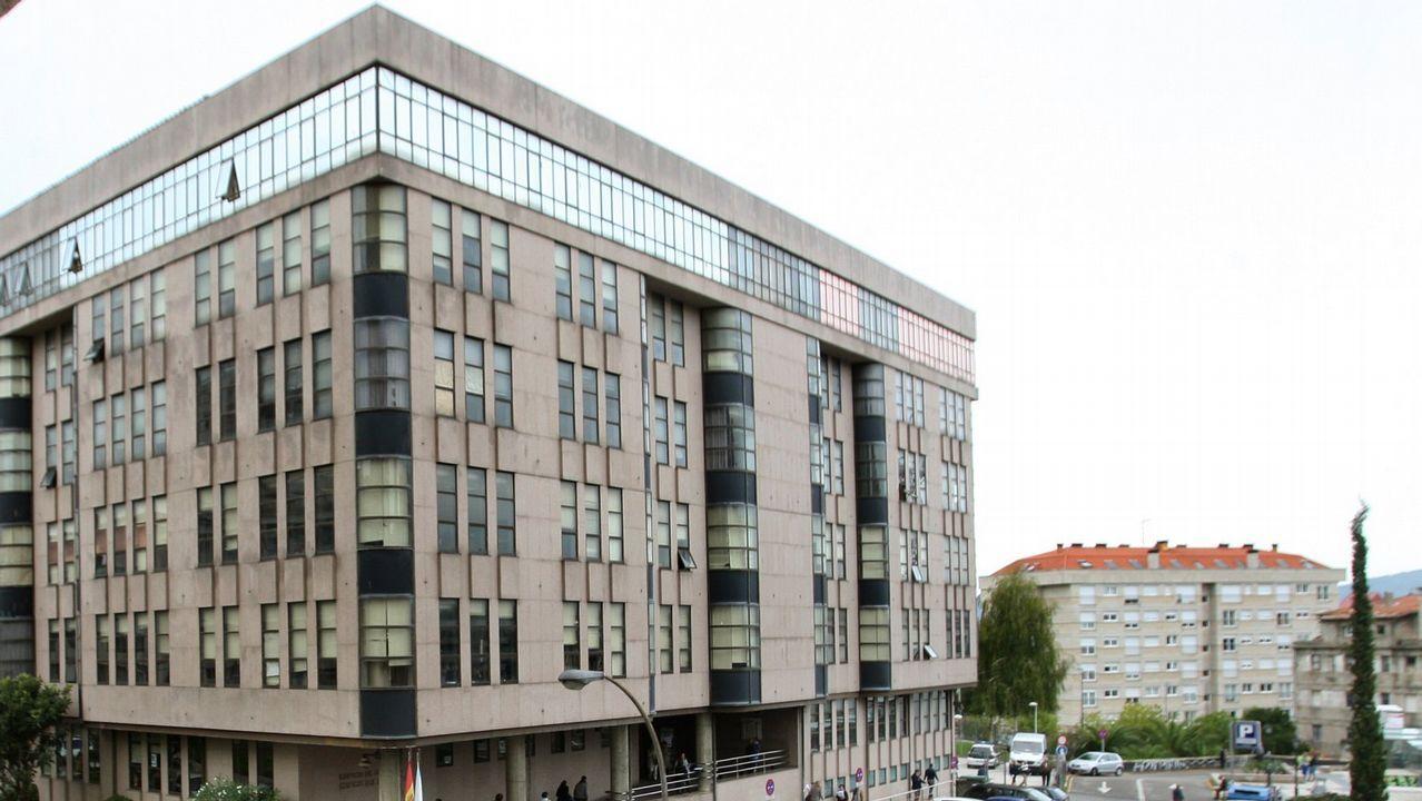 La osezna rescatada en Santo Adriano.Tráfico en el barrio de El Llano de Gijón