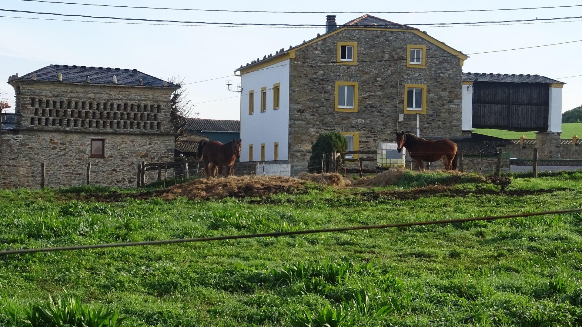 Hórreos gallegos, de estilo Ribadeo y Mondoñedo, en Santa Gadea, en Tapia