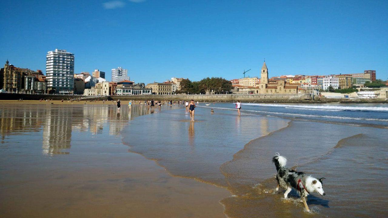 El buen tiempo ha llevado a muchos gijoneses a acercarse a la playa de San Lorenzo.