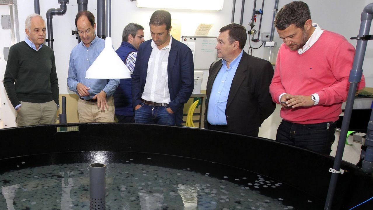 Rueda de prensa de Feijoo tras la reunión interdepartamental del coronavirus.Garcia Díez (a la izquierda) y De Olano (a la derecha), en una visita a la planta de acuicultura de San Cibrao en 2016