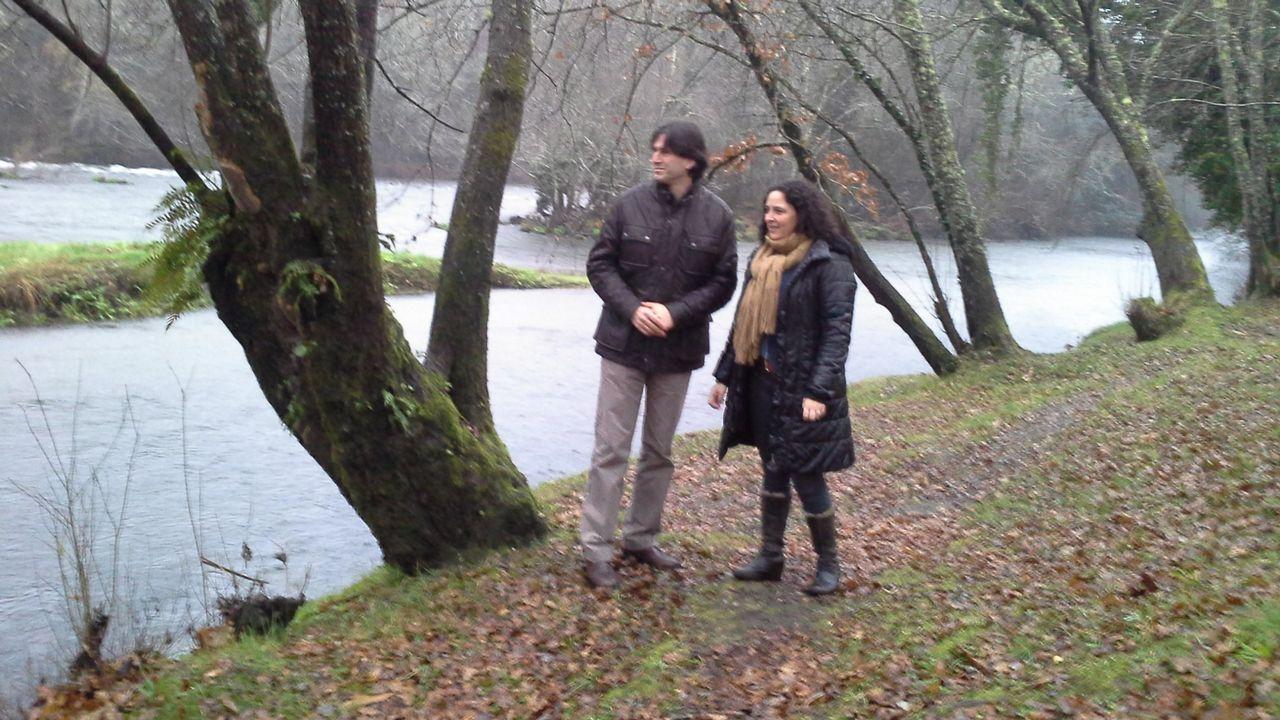 Ponte Ledesma descubre su sillería