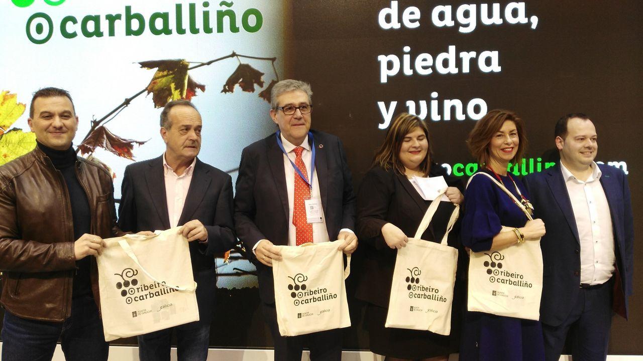 El polígono de San Cibrao das Viñas, el principal foco industrial de Ourense