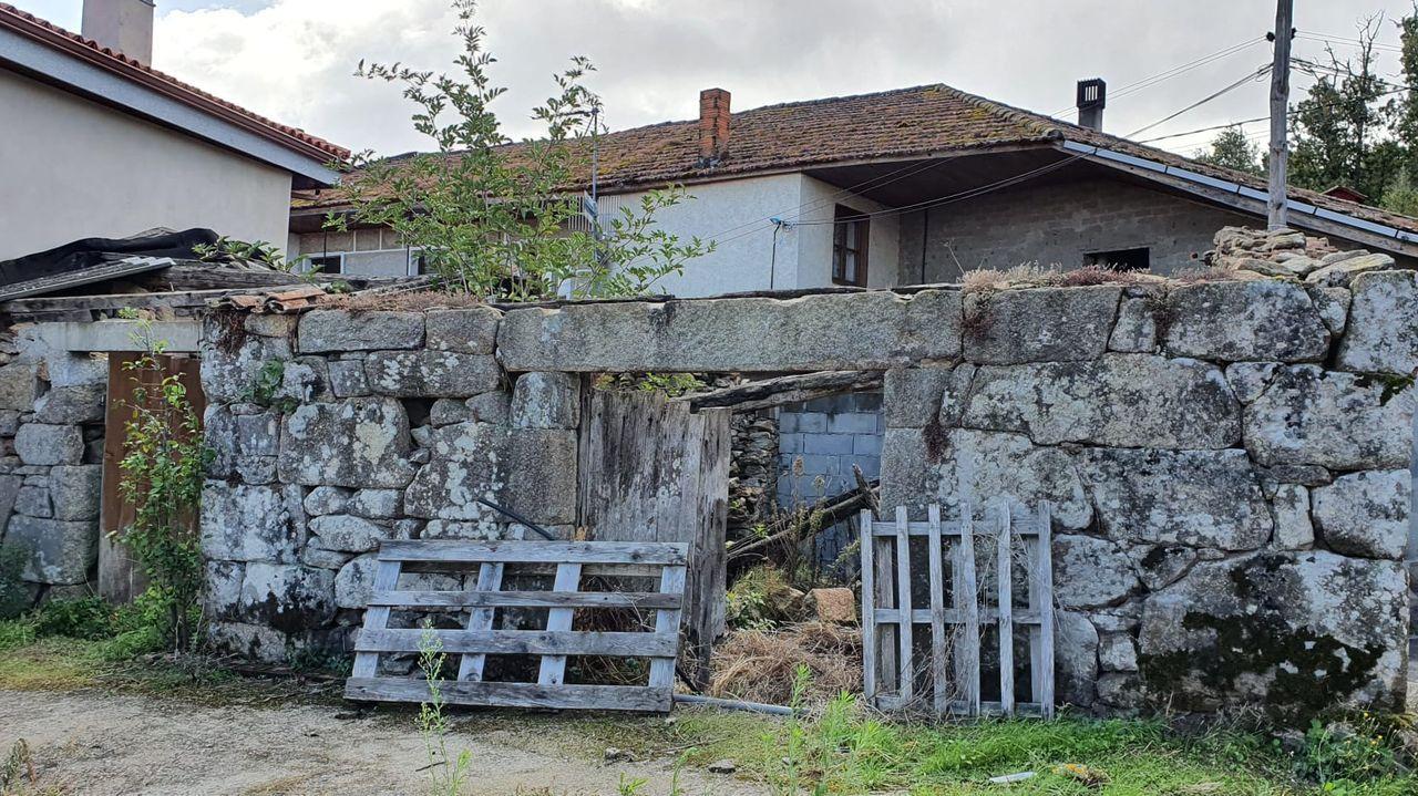 ¿Cómo podrá salir reforzado de la pandemia el sector del vino en Galicia?.La vuelta el cole en infantil fue el 10 de septiembre