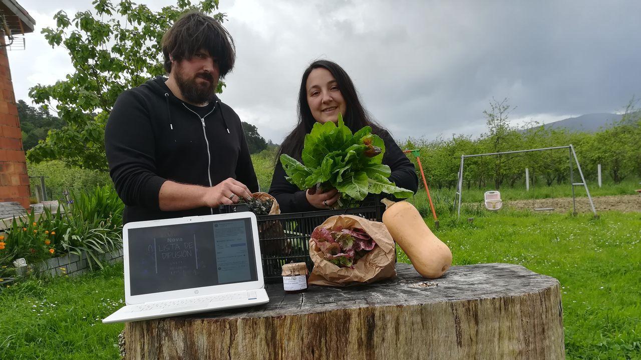 Manuel y Lucía, de Rebulidoiro Granxa Eco, muestran los productos ecológicos de su huerta que mandan a toda España. En Santiago y comarca los reparten ellos.