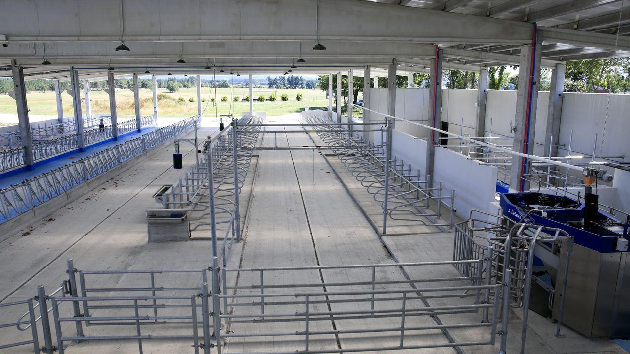 La granja ha sido construida para acoger hasta un total de 82 vacas