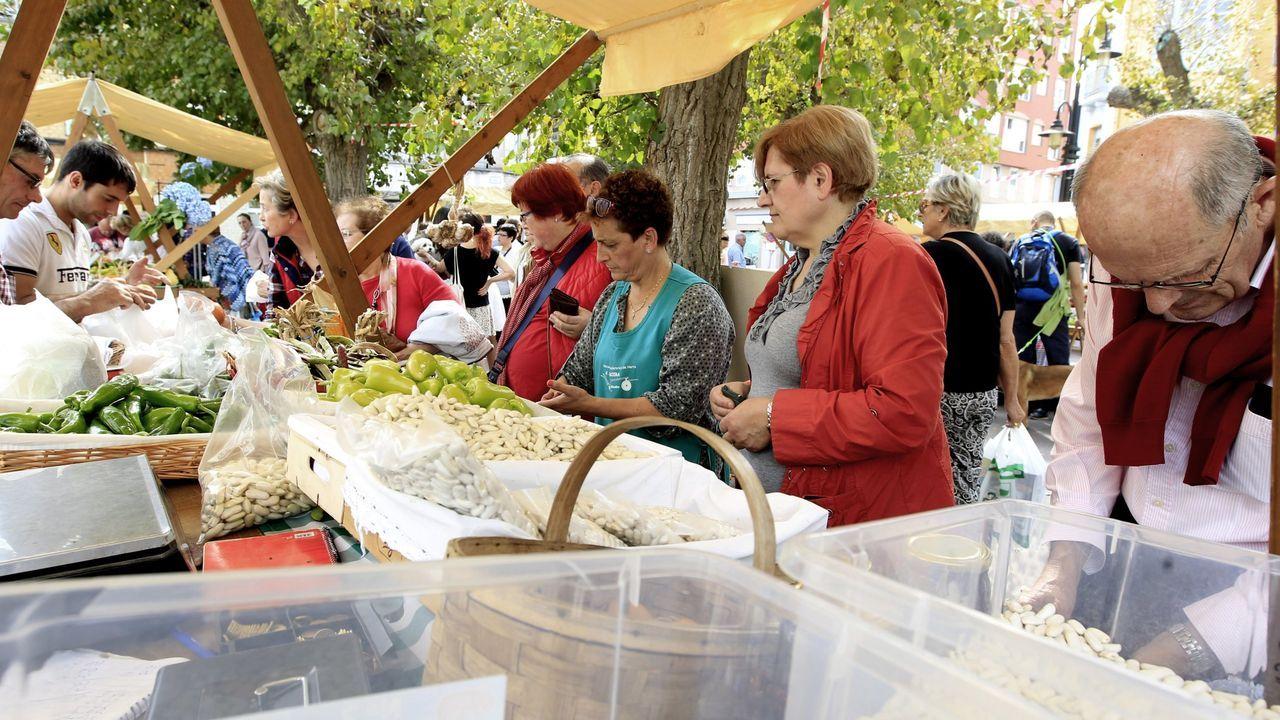 Galicia tiene un elevado número de variedades tradicionales