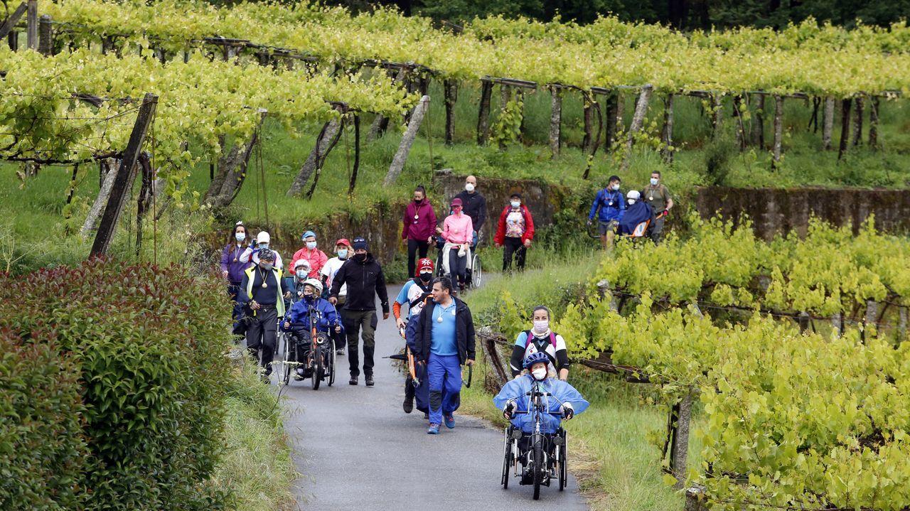 El Camino de Santiago renace tras el covid, así es una etapa de la ruta portuguesa
