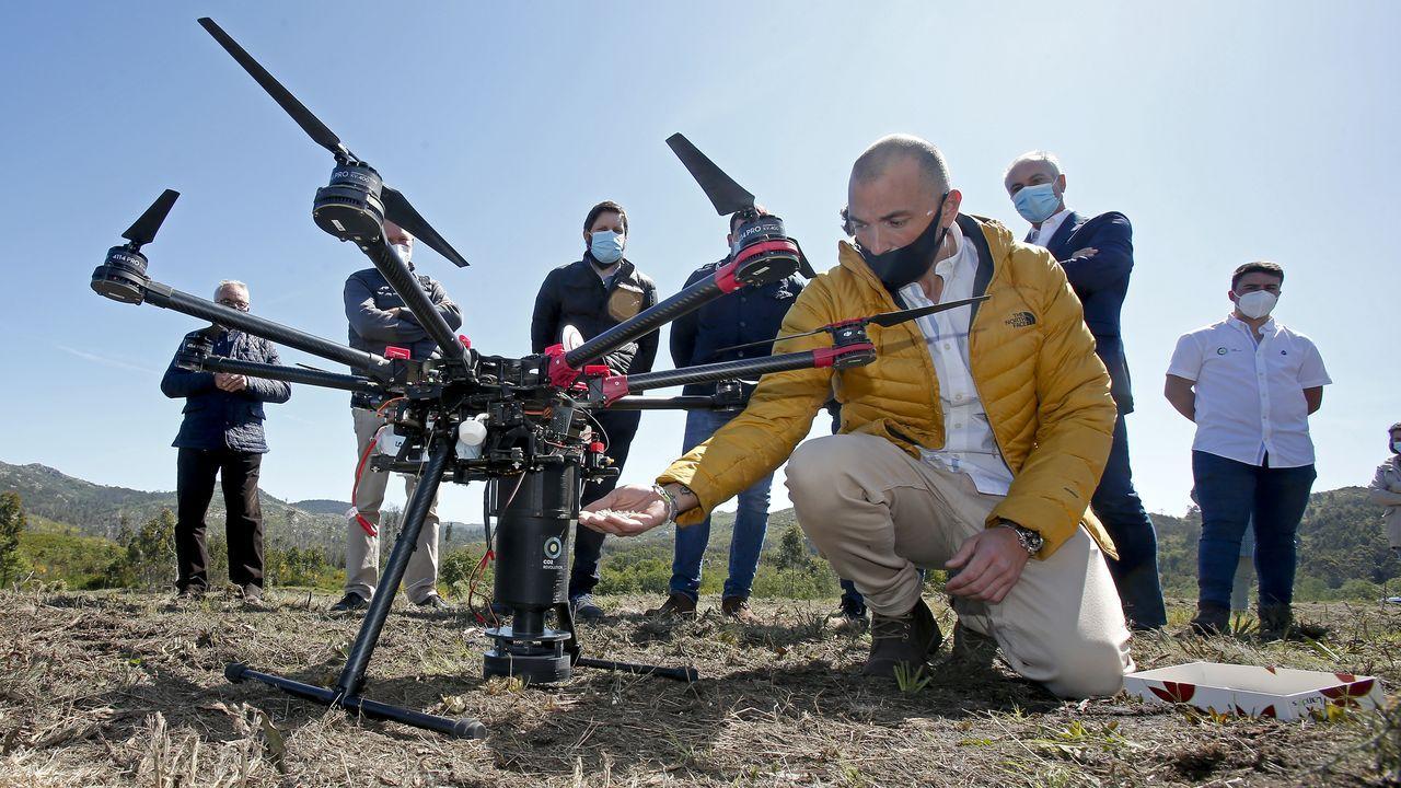 Uno de los drones empleados para llevar a cabo la plantación