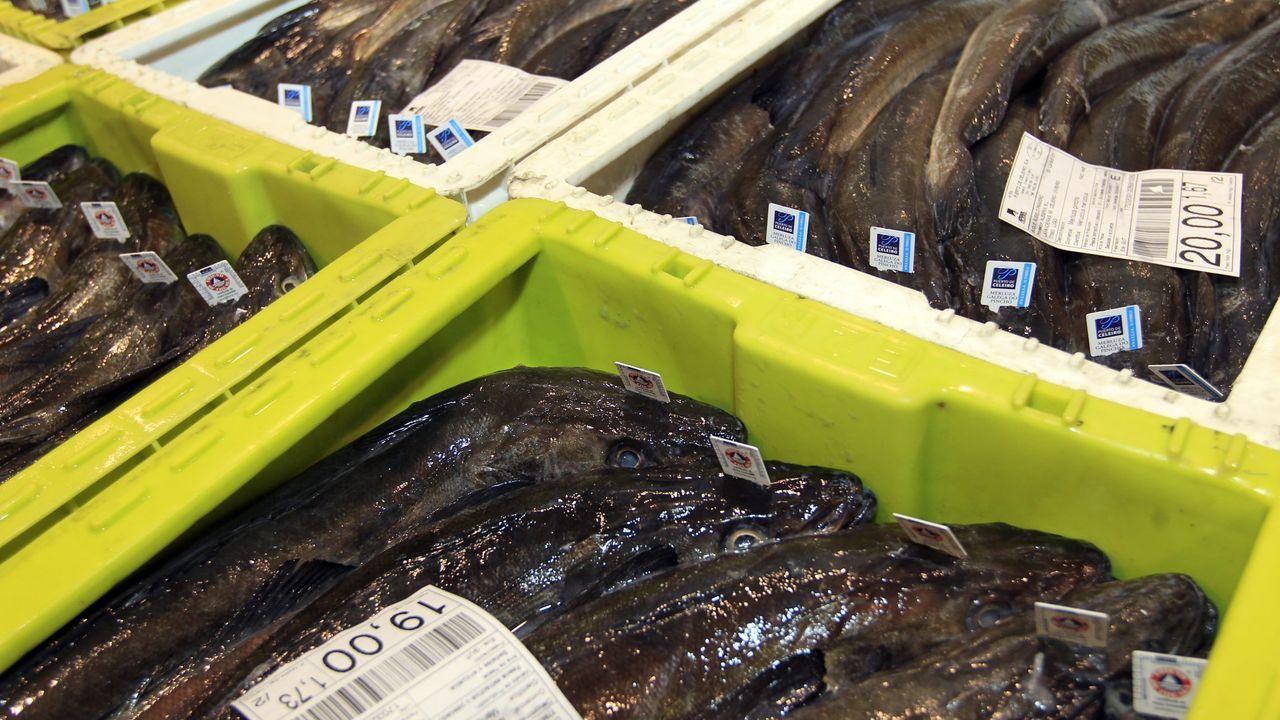 Manifestación de Alcoa en Viveiro.A 6,50 euros el kilo de las merluzas de más de 1.100 gramos y a 3,90 el de las de menos. Así vende este mes Carrefour 200.000 kilos que le compra a la flota de Celeiro