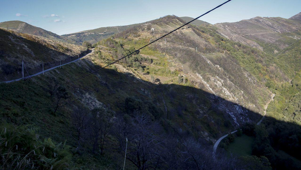 Los montes de San Martín de Cereixedo en la actualidad, con un ligero manto verde