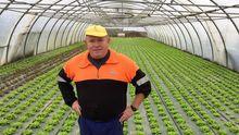 Jesús cultiva sus lechugas en Chamín (Arteixo) y visita Inditex tres veces por semana