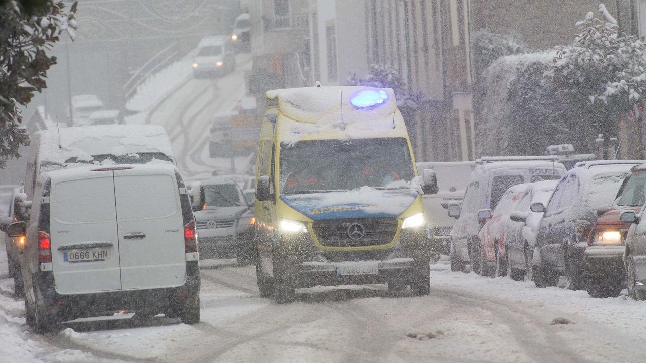 Dora trajo la nieve a casi toda la provincia