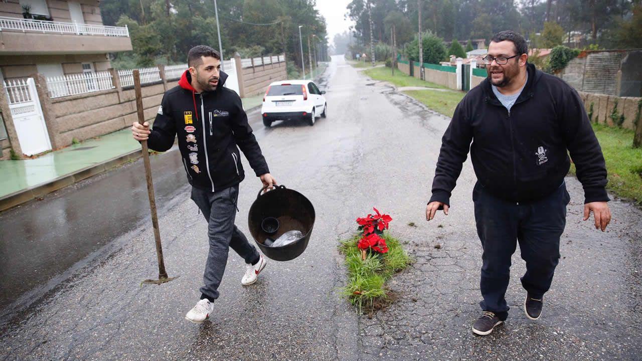 Los baches más floridos de España están en O Porriño