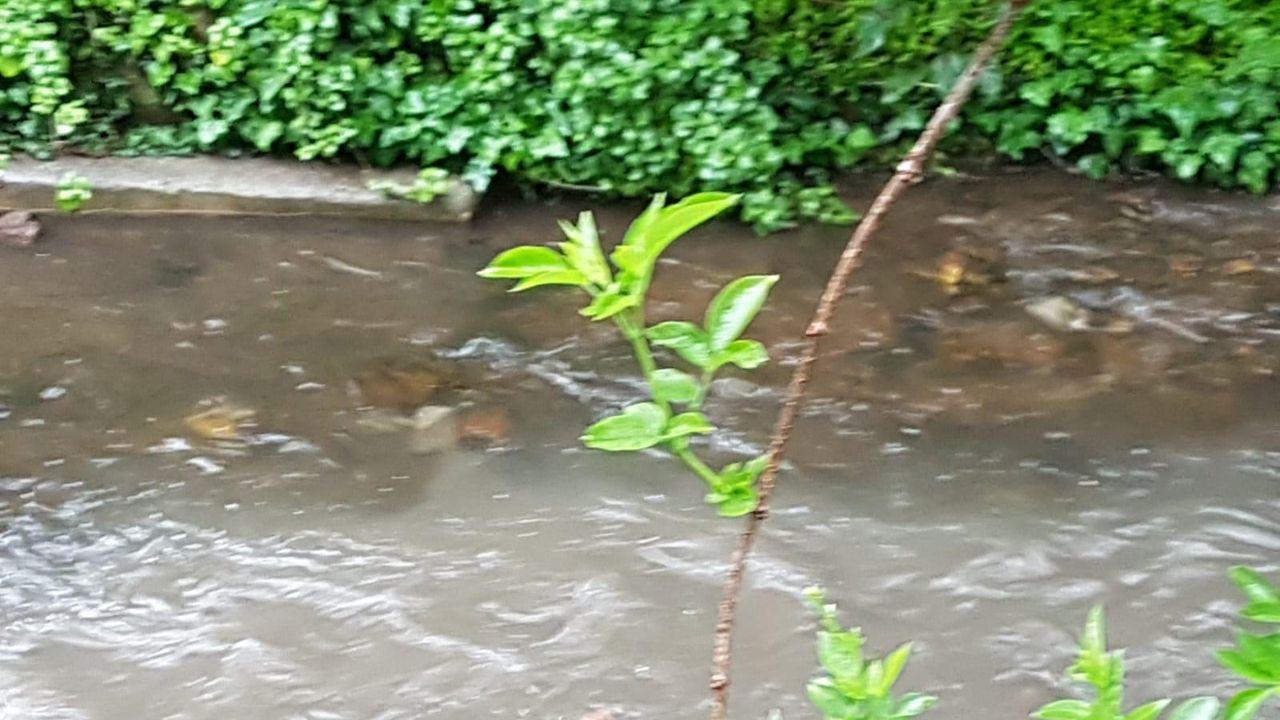 Vertido de aguas residuales en el río Arlós