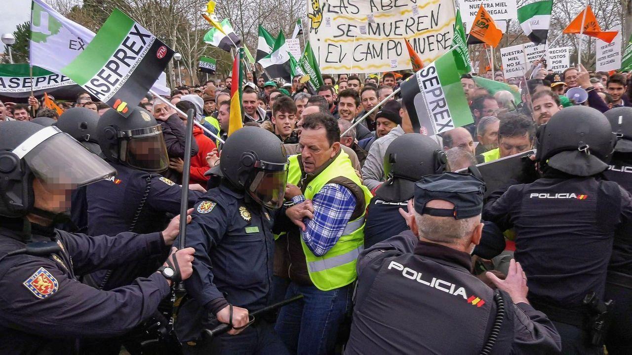 Los antidisturbios disuelven una manifestación de agricultores en Don Benito (Badajoz)
