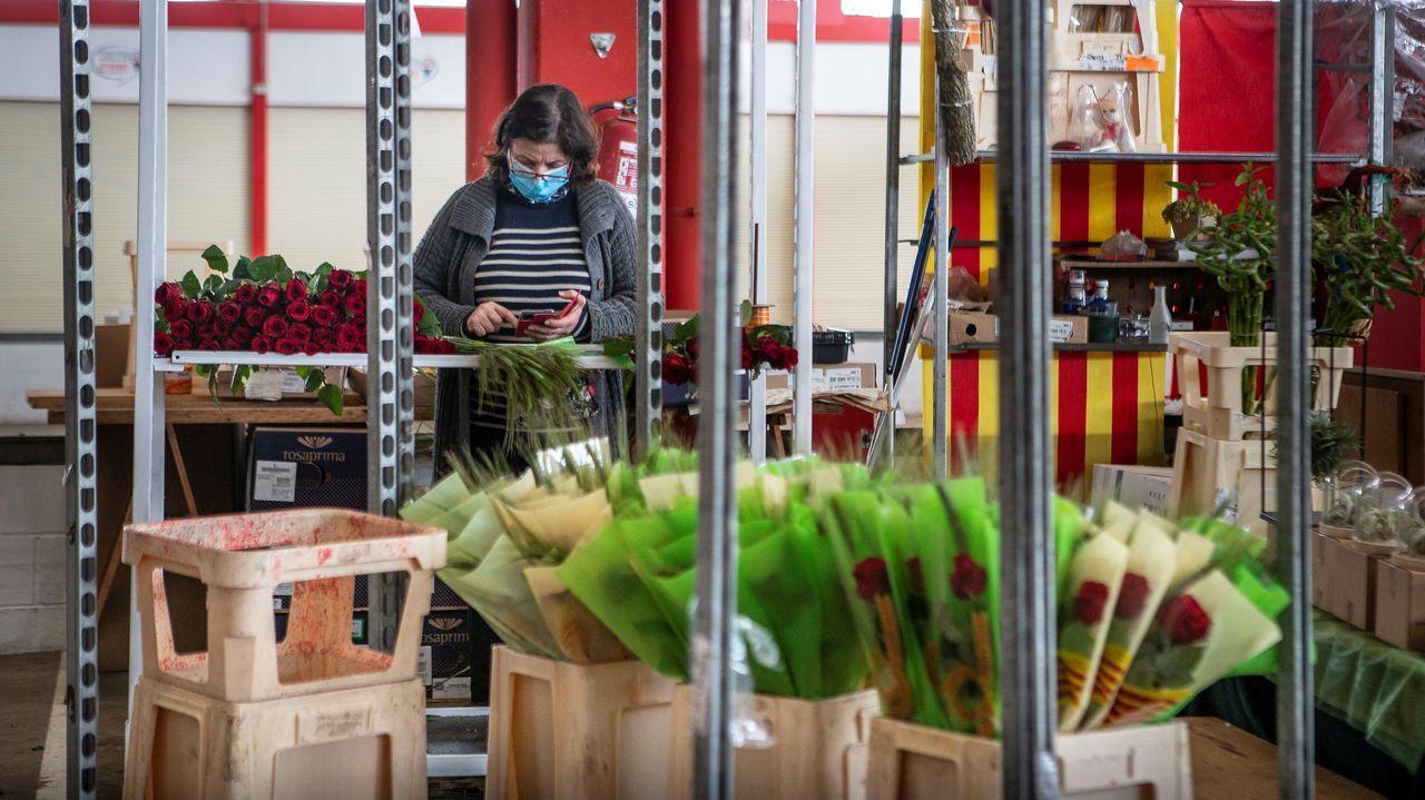 El sector de la flor y planta ornamental es uno de los más afectados por la crisis. En la imagen, tomada este jueves día de San Jordi, una florista en el mercado de flores de Barcelona