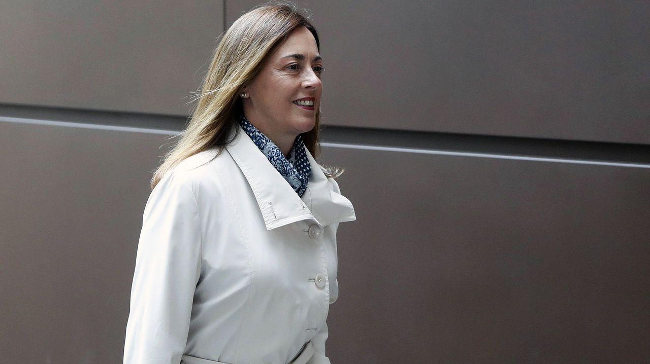 La consejera de Servicios y Derechos Sociales, Pilar Varela.La exconsejera de Cultura del Principado, Ana Rosa Migoya, a su llegada a la Audiencia Provincial de Oviedo para declarar como testigo en el juicio por las presuntas irregularidades contables en el Centro Niemeyer