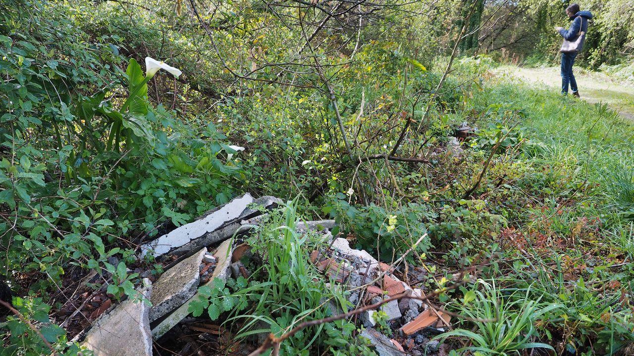 Los residuos dañan la vega de Lestrobe, en Dodro