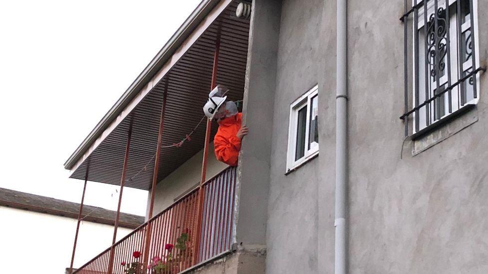Protección Civil eliminó el nido aparecido en una casa en Vilela