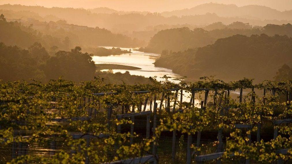 ¿Cuál es el mayor exponente de feísmo de la ría de Vigo?