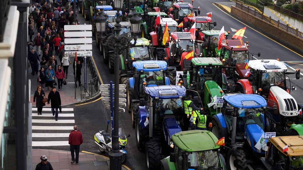 31/10/2019: El precio de la leche logra la mayor subida desde el 2014. Durante ese mes, en base a los datos que maneja el Ministerio de Agricultura, llegó a los 32,1 céntimos por litro de media. Con todo, aún no han logrado repercutir en el ganadero las fuertes subidas de cotización de la mantequilla o la leche en polvo experimentadas en el mercado internacional