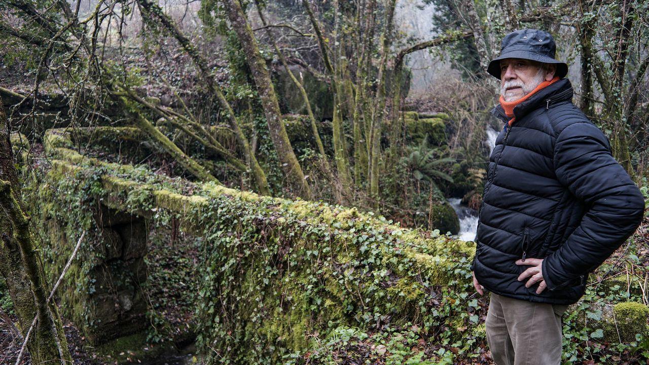 Pablo Rodríguez, Oitavén, fala sobre o bosque de Ridimoas.El director general de la Guardia Civil, Félix Azón, junto a la subdelegada del Gobierno en Málaga, María Gámez, saluda a los agentes de montaña que han participado durante trece días en el operativo de rescate de Julen
