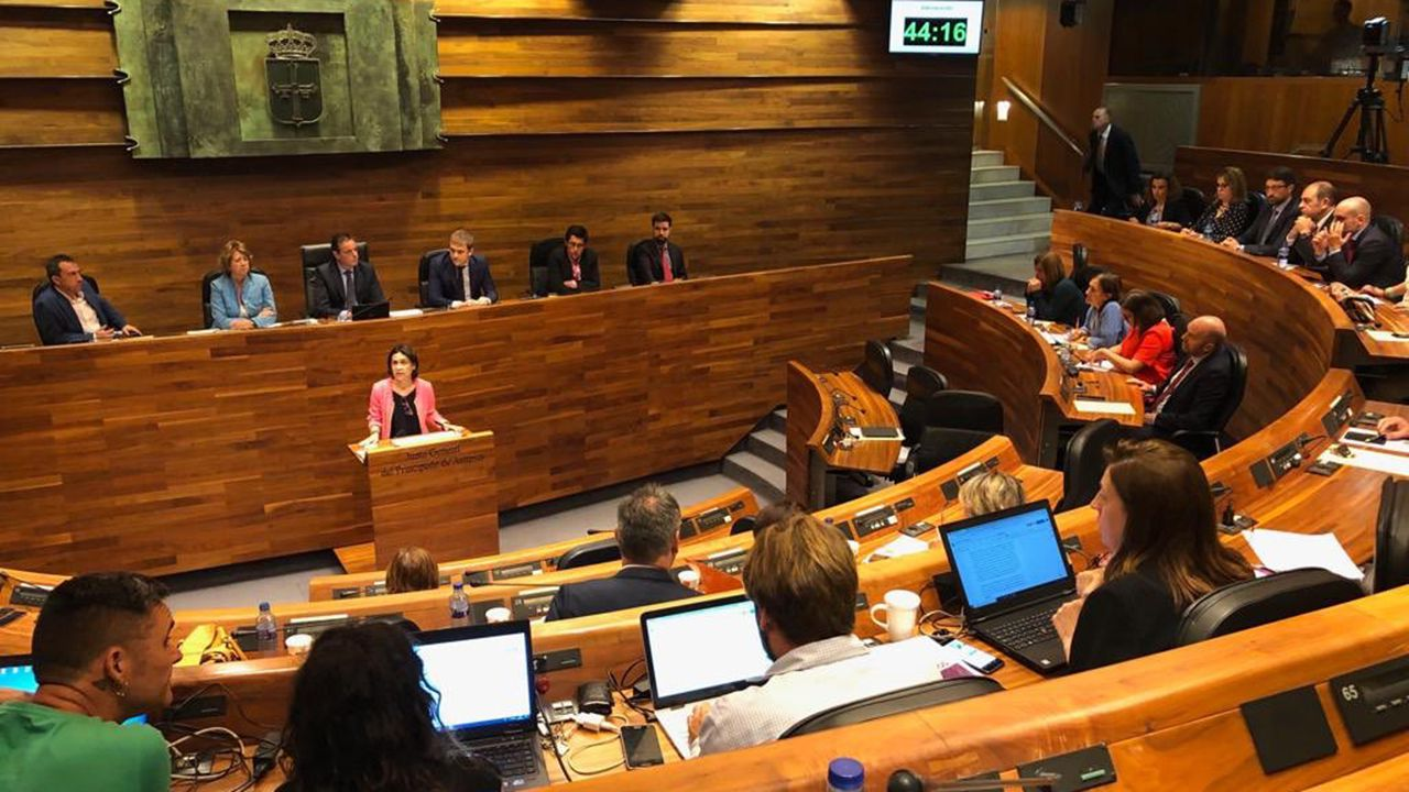 Dolores Carcedo en la Junta General
