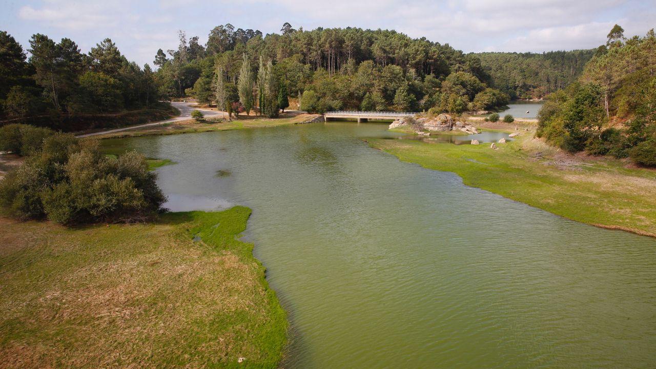 La cola del embalse del Umia, en una imagen tomada este viernes. La presa está en alerta por cianobacterias desde el 16 de julio
