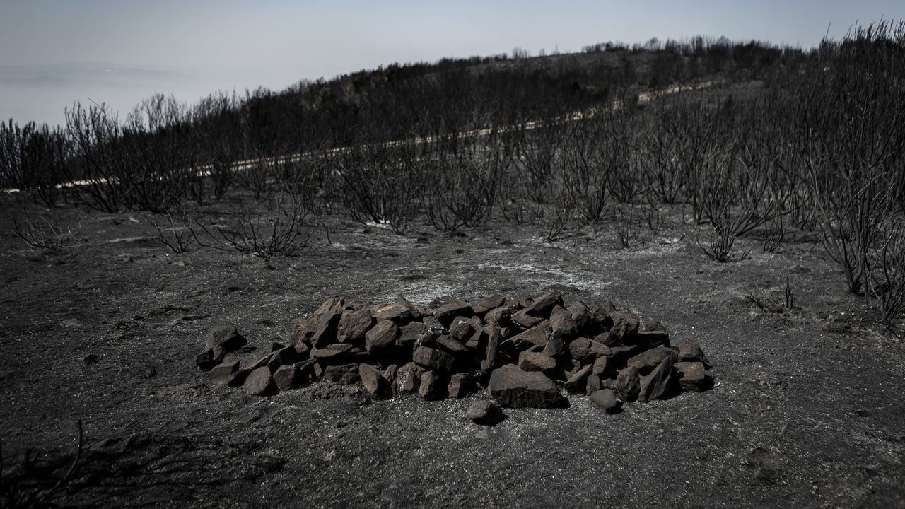 Restos del incendio que estuvo a punto de colarse en el concello de Vilardevós desde Portugal