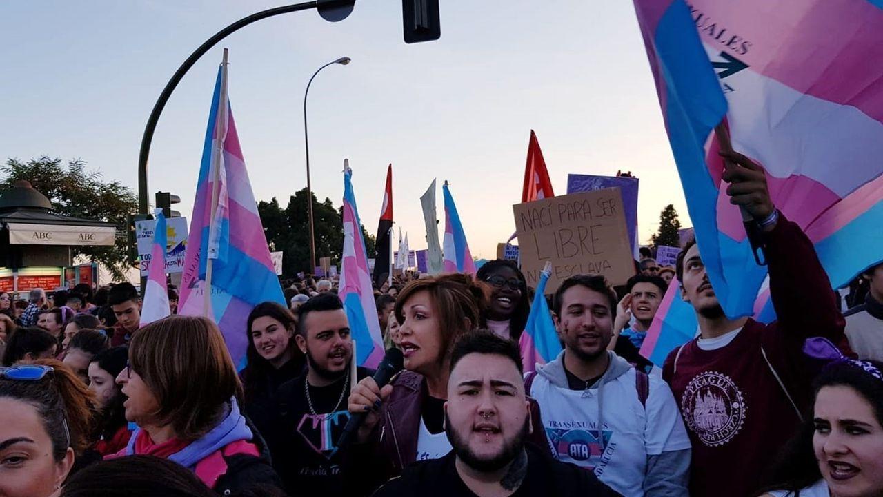 Manifestación en pos de los derechos trans