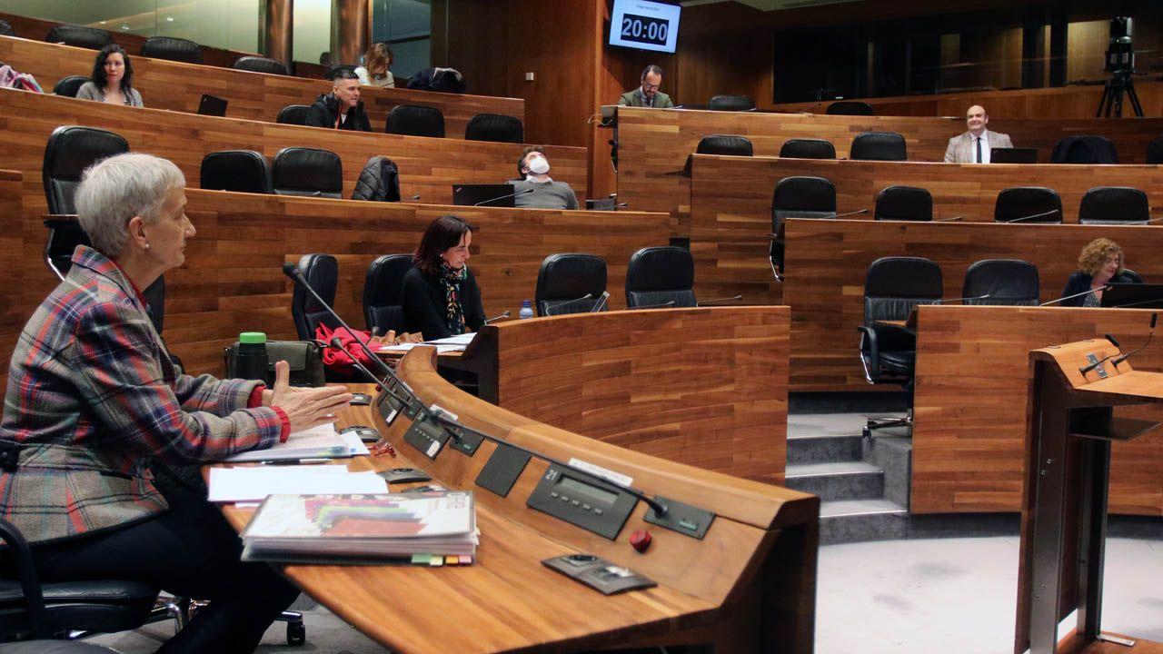 La consejera de Educación, Carmen Suárez, en la Junta General del Principado