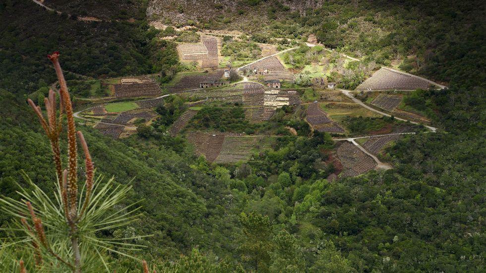Una vista general del pueblo desde el mirador de O Duque