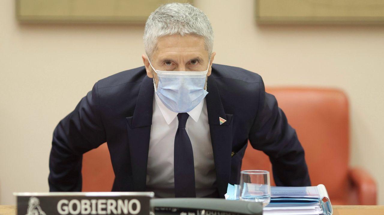 El ministro del Interior, Fernando Grande-Marlaska, en una comparecencia en el Congreso