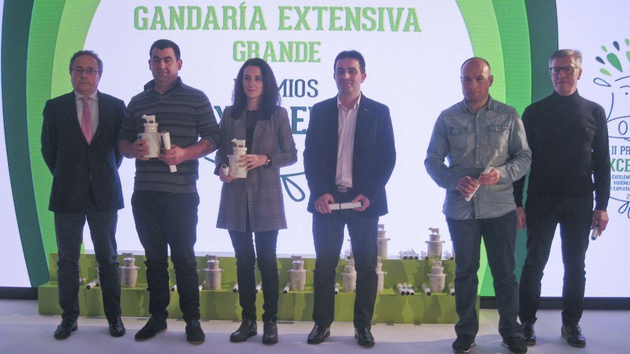Pemiados en la edición del 2018, cuyos galardones se entregaron en Vilalba