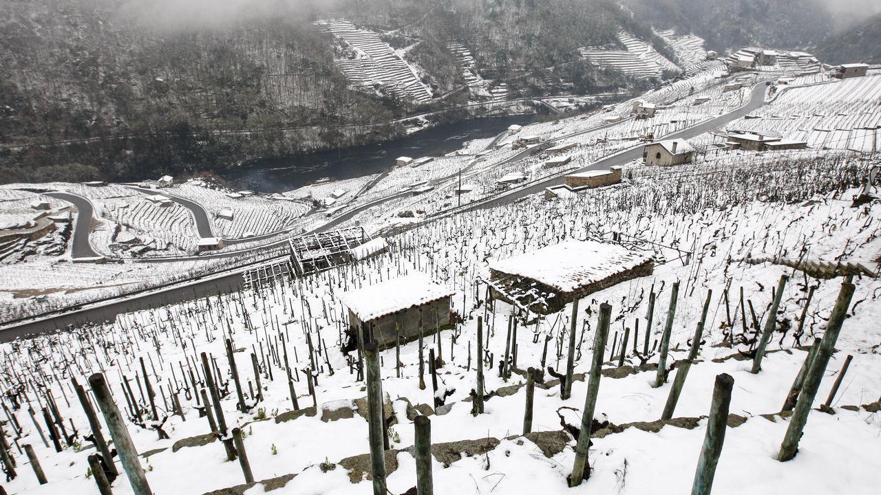 Así se vive el invierno en un hotel a 1.800 metros de altitud.La nieve que deja el temporal cubre los bancales de las viñas de la Ribeira de San Fiz.