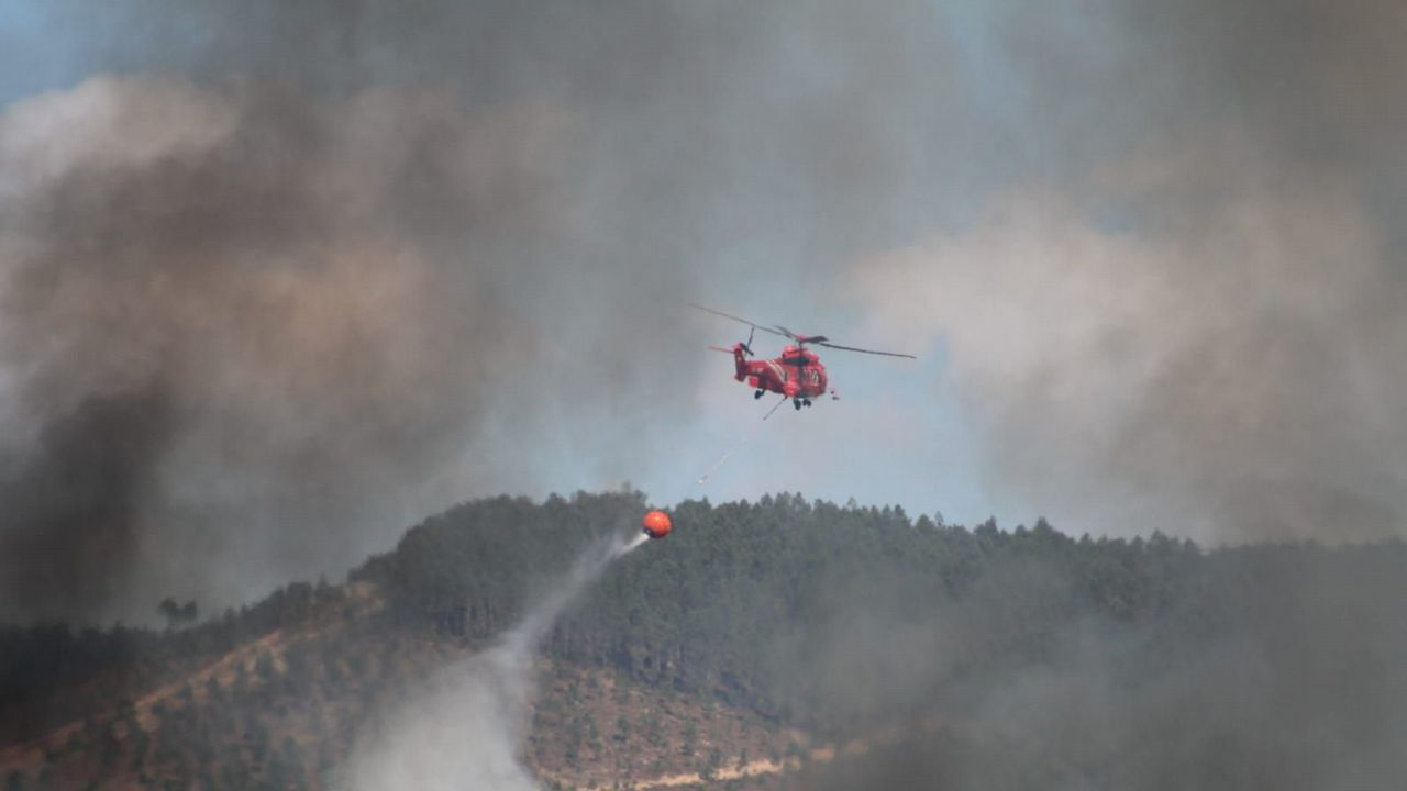 Anatomía de un incendio forestal.Imagen de un incendio en Asturias
