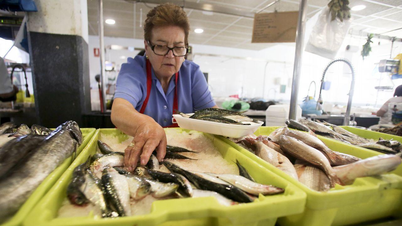 Poca sardina, pero sabrosa, a 18 euros.Noite meiga en A Coruña