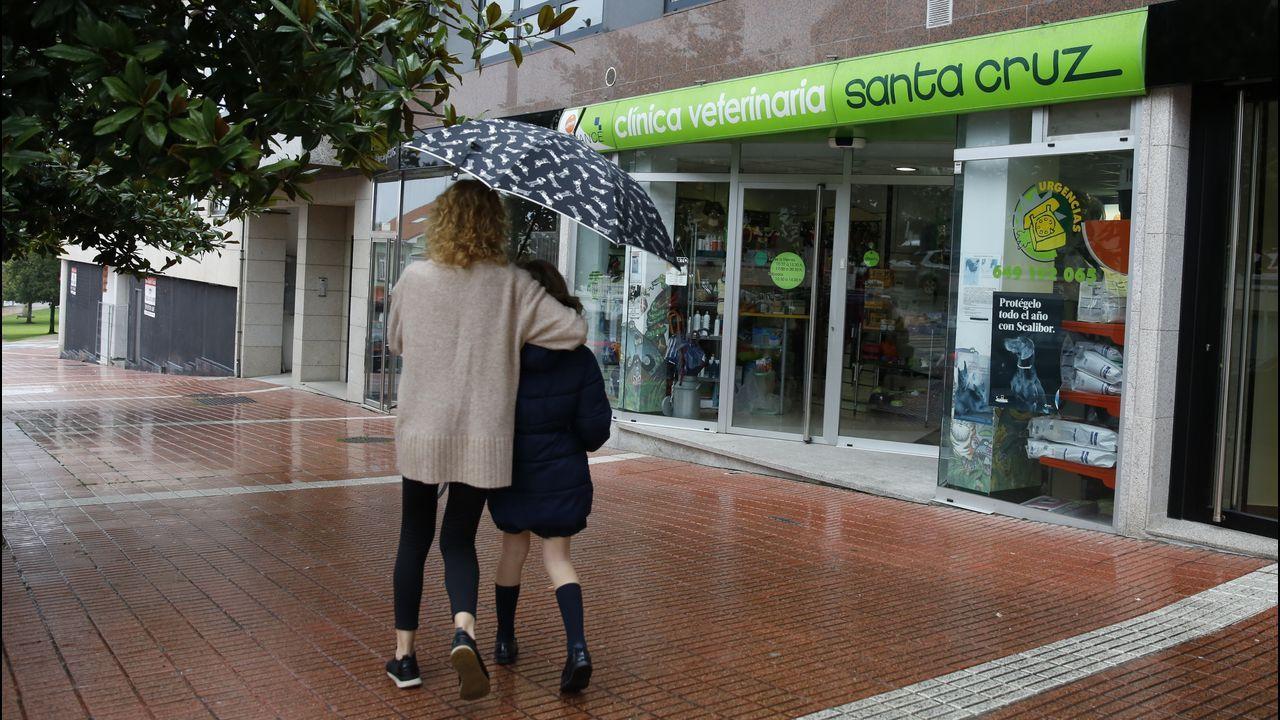 Negocios en Santa Cruz