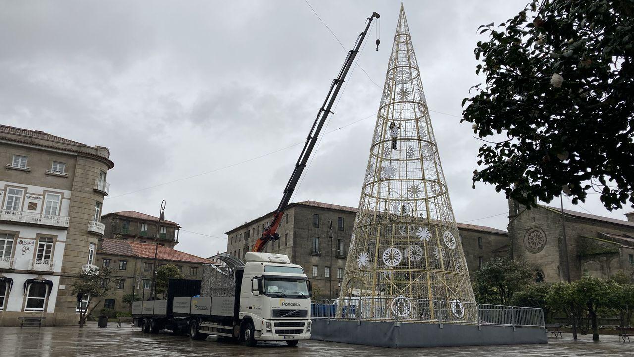 Premios Cidade de Pontevedra a Paula Dapena y los sanitarios.Desmontaje del árbol de la plaza de A Ferrería