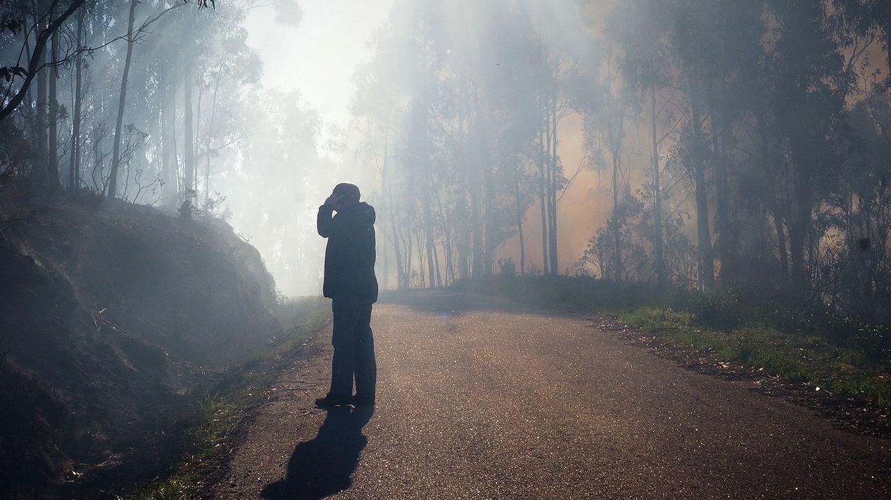 Más imágenes de la zona quemada en Bexo